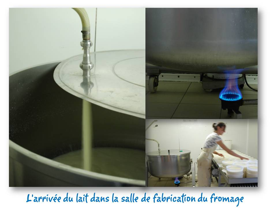 Rencontre_partage_fromage_10