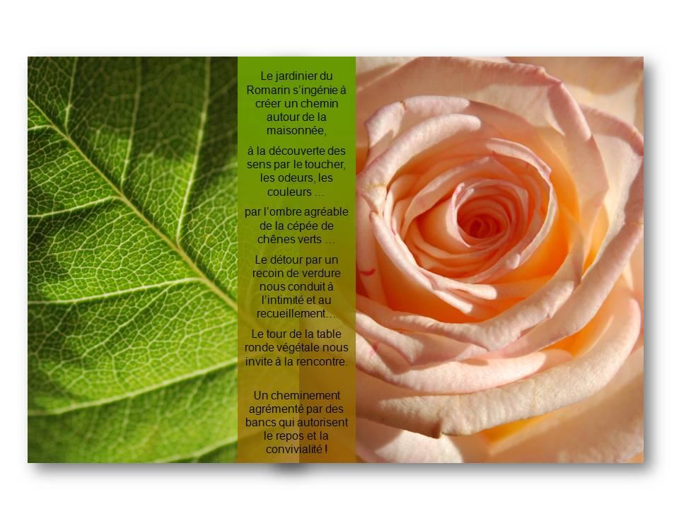 Rencontre_partage_jardinier_04