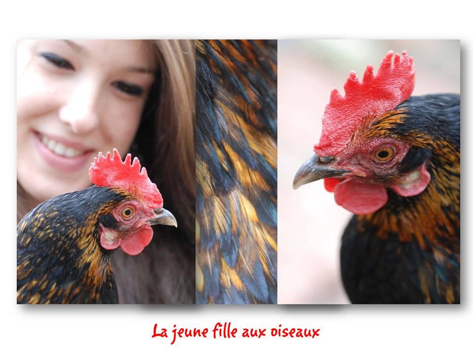 Rencontre_partage_oiseaux_01