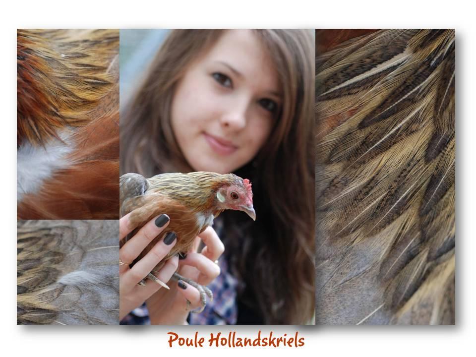 Rencontre_partage_oiseaux_11