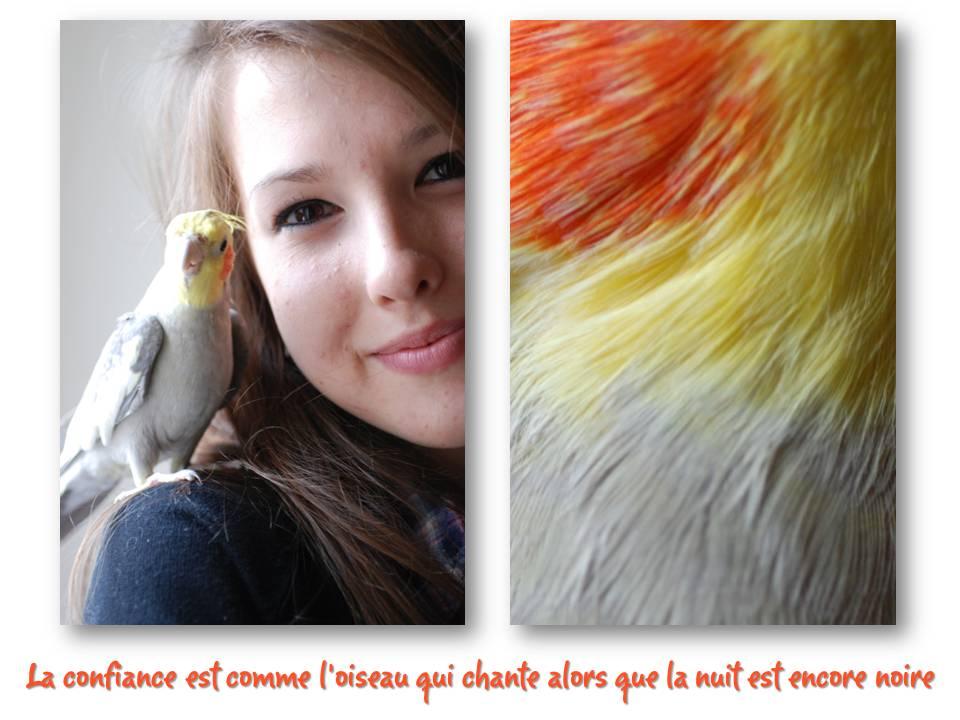 Rencontre_partage_oiseaux_13